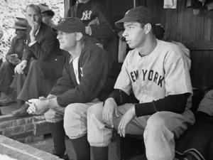 Yankee Great Joe Dimaggio Sitting in Dugout, Watching Game. Yankees Vs. Brooklyn Dodgers by Carl Mydans