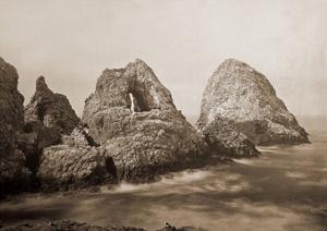 Sugarloaf Islands at Fisherman's Bay, Farallon Islands, San Francisco, California, 1869 by Carleton Watkins