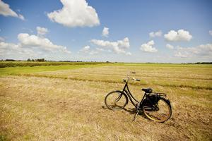 Bike in a Field in the Dutch Countryside North of Amsterdam, Netherlands by Carlo Acenas