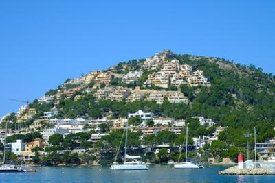 Port d'Andratx fishing village, Majorca, Balearic Islands, Spain, Mediterranean, Europe