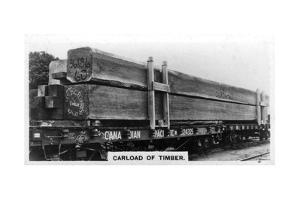 Carload of Douglas Fir, Canada, C1920S