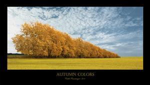 Autumn Colors 1 by Carlos Casamayor