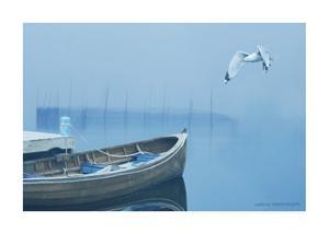 Fog in the Bay by Carlos Casamayor