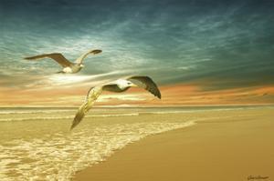 Soft Sunrise on the Beach 6 by Carlos Casamayor