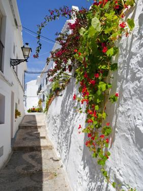 Town of Frigiliana, White Town in Andalusia, Spain by Carlos Sánchez Pereyra