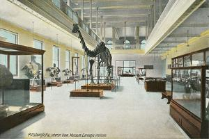 Carnegie Institute, Natural History