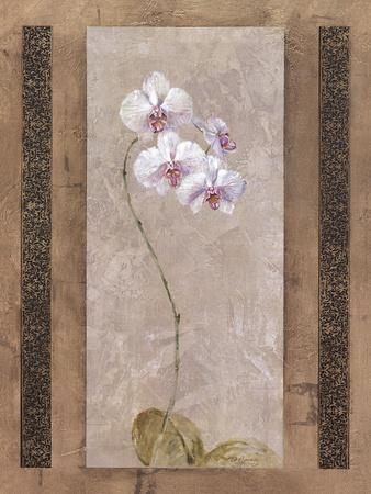 Contemporary Orchid I