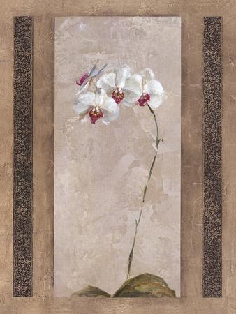 Contemporary Orchid II