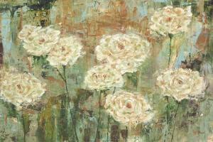 White Roses by Carol Black