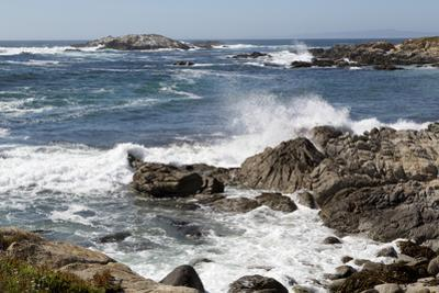 17-Mile Drive, Scenic Road Through Monterey, California by Carol Highsmith