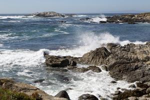 17-Mile Drive, Scenic Road Through Monterey, California by Carol Highsmith