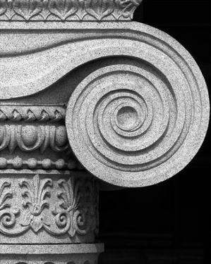 Column detail, U.S. Treasury Building, Washington, D.C. - Black and White Variant by Carol Highsmith