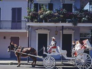 French Quarter Mule Ride in Carriage by Carol Highsmith