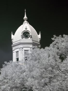 Monroe County Courthouse, Monroeville, Alabama by Carol Highsmith
