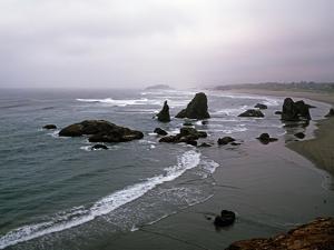 Rocky Oregon Coast by Carol Highsmith