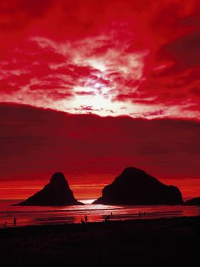 Sunset on the Rocky Oregon Coast by Carol Highsmith