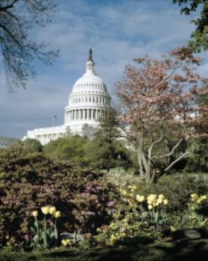 U.S. Capitol, Washington, D.C. Number 3 - Vintage Tint by Carol Highsmith