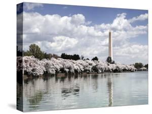 Washington Monument, Washington, D.C. - Vintage Variant by Carol Highsmith