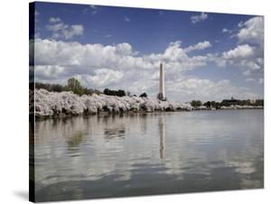 Washington Monument, Washington, D.C. by Carol Highsmith