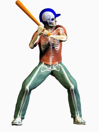 Biomedical Illustration of a Baseball Batter and His Skeleton by Carol & Mike Werner