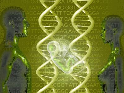 Biomedical Illustration of the Human Personal Genome, the Concept of Individual DNA Testing by Carol & Mike Werner