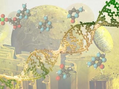 Illustration of DNA and the Cell by Carol & Mike Werner