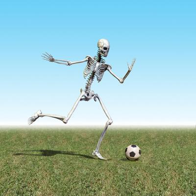 Skeleton Playing Soccer by Carol & Mike Werner