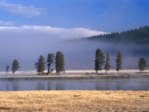 Alum Creek in the Hayden Valley, Yellowstone National Park, Wyoming, USA by Carol Polich