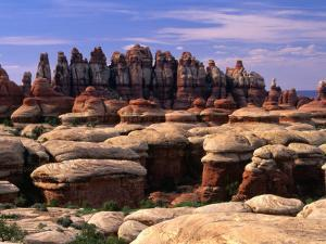 Chesler Park Trail in Needles Region, Canyonlands National Park, USA by Carol Polich