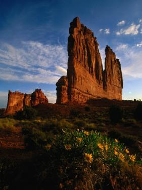 Courthouse Towers with Wildflowers in Foreground, Arches National Park, USA by Carol Polich