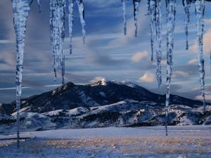 Icicles Hanging in Front of Mountain, Bridger Mountains, Gallatin Valley, USA by Carol Polich