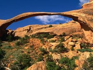 Landscape Arch, Arches National Park, Utah, USA by Carol Polich