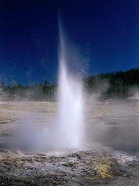 Plume Geyser in the Old Faithful Area, Yellowstone National Park, Wyoming, USA by Carol Polich