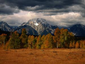 Storm Clouds Over Mountains and Trees, Grand Teton National Park, USA by Carol Polich