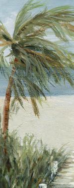 Beach Walk I by Carol Robinson
