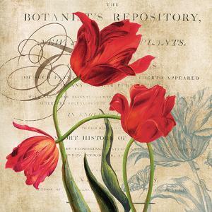 Botanist's Repository by Carol Robinson