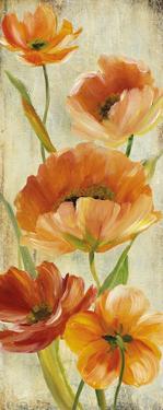 Flower Dance I by Carol Robinson