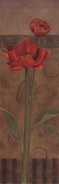 Geometric Poppy I by Carol Robinson