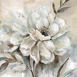 Neutral Bloom I by Carol Robinson