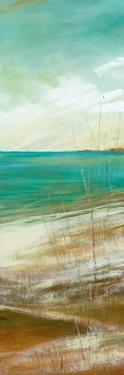 Seafaring I by Carol Robinson