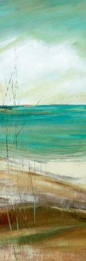 Seafaring II by Carol Robinson