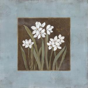 Spring Awakening I by Carol Robinson