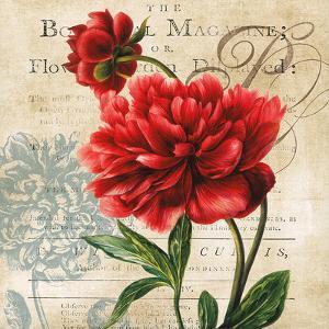 The Botanist Magazine by Carol Robinson