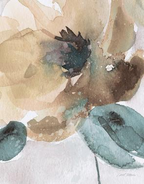 Watercolor Poppy II by Carol Robinson
