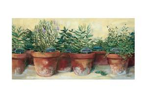 Potted Herbs I by Carol Rowan