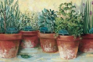 Potted Herbs II by Carol Rowan