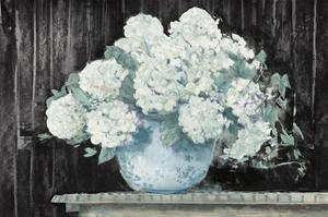White Hydrangea on Black Crop by Carol Rowan