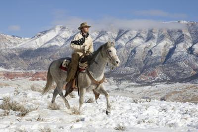 Cowboy On Grey Quarter Horse Trotting In The Snow At Flitner Ranch, Shell, Wyoming by Carol Walker