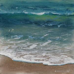 Shoreline Study 07915 by Carole Malcolm