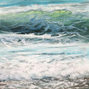 Shoreline study 13316 by Carole Malcolm